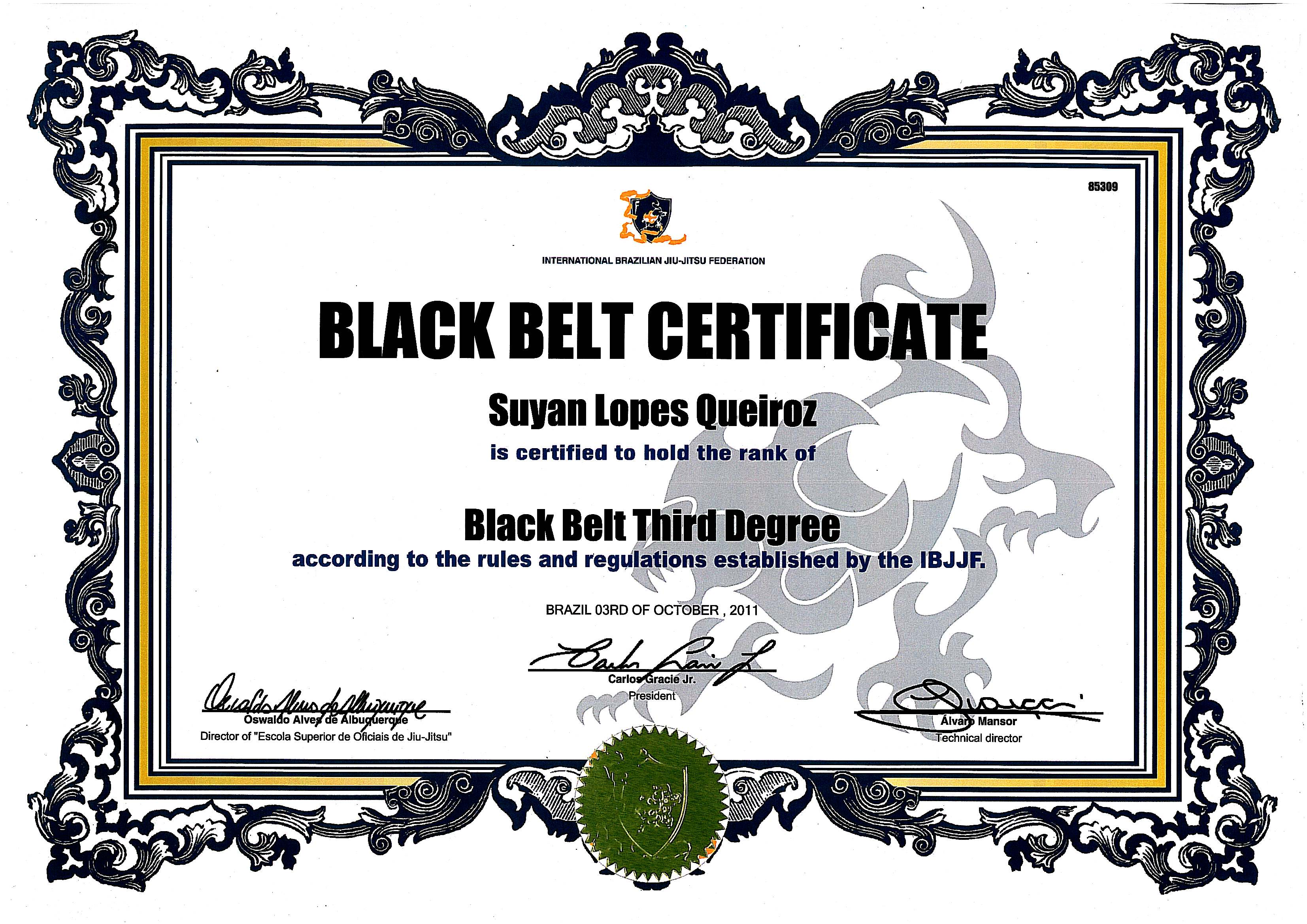 Black belt certificates printable pictures to pin on for Black belt certificate template